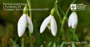 konkurs-granty-wiosna-2016